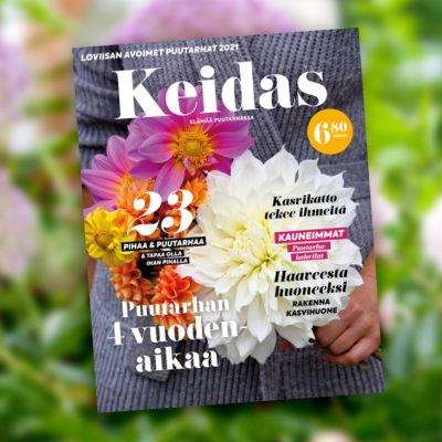 KEIDAS_2020-1_small